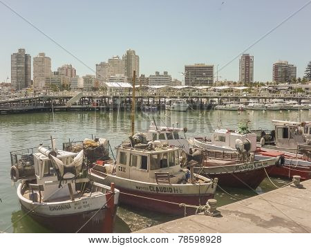Boats At Punta Del Este Port