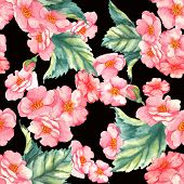 image of wild-brier  - Beautiful watercolor seamless pattern with tender pink brier flowers and leaves on the black background - JPG