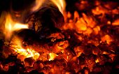 image of furnace  - Burning down fire wood in the furnace - JPG