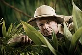 stock photo of rainforest  - Survival confident adventurer exploring the rainforest jungle holding a machete - JPG