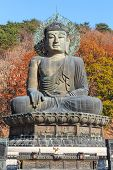 stock photo of seoraksan  - statue of buddha and colorful of tree in autumn at old temple in Seoraksan National Park  - JPG