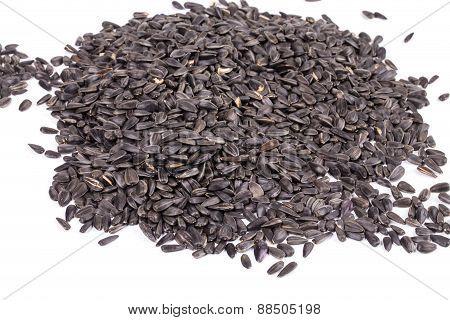 Bunch of sunflower seeds.