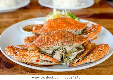 Stream Crabs