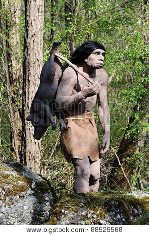Model Of Neanderthal Hunter Carrying Pig