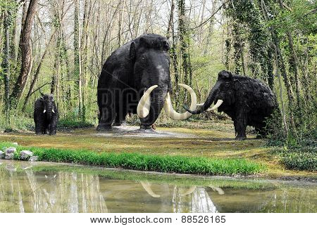 Wooly Mammoth Family Near Shoreline