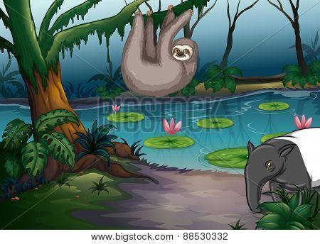 Animals living by the pond in the forest
