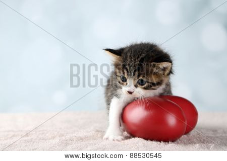 Cute little kitten with red heart on light background