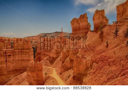 Beautiful landscape from Bryce Canyon National Park in Utah, USA