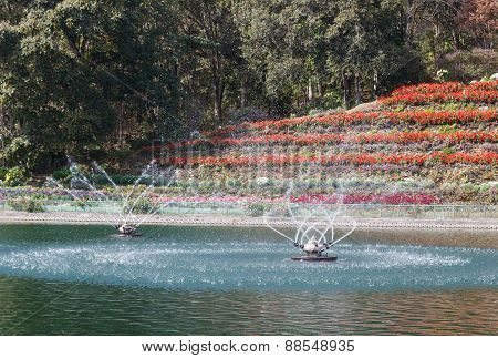 Swirling Fountain In The Pond