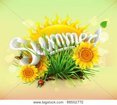 Summer, time for a vacation and travel, the sun and some grass, sunflowers, a ladybug and butterfly in the garden, universal background