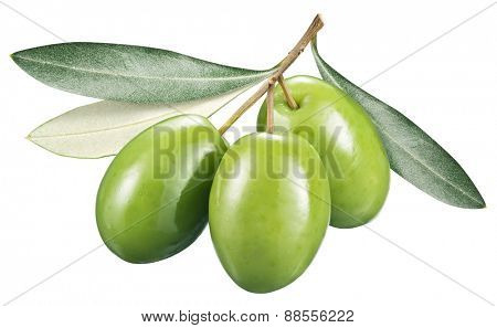 Green olives with leaves on a white background. File contains clipping paths.