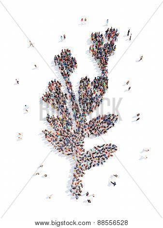 people in the form of a leaf.