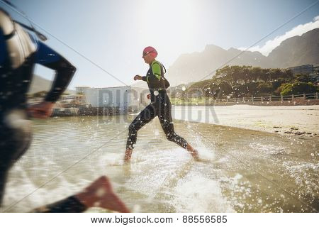 Participants Running Into The Water For Start Of A Triathlon
