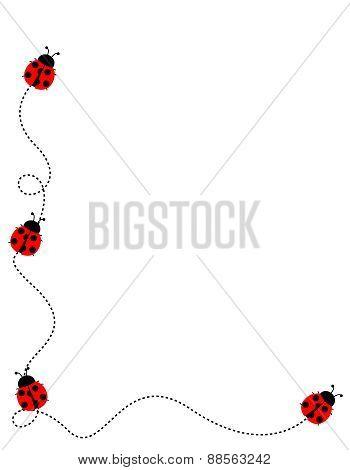 Lady Bug Frame