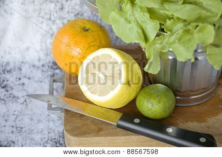 Citrus With Lettuce In Silver Bin