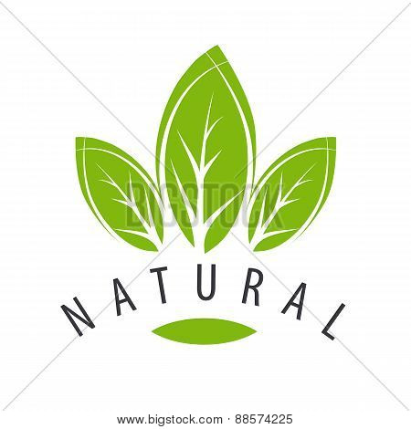 Vector Logo Natural Green Leaves