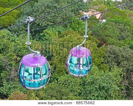 Cable car over a tropical trees
