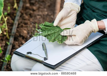 Bio researcher with clipboard