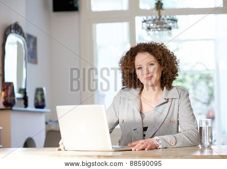 Mid Adult Woman Using Computer At Home