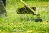 image of grass-cutter  - close up shot of gasoline trimmer head with nylon line cutting fresh green grass to small pieces - JPG