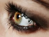 pic of tears  - Eye of young woman with tear drop close up - JPG