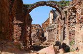 picture of european  - Ruins of Medieval European Castle in Belarus - JPG