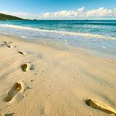 image of footprints sand  - Footprints on sand at beautiful beach at Seychelles - JPG