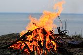pic of bonfire  - big bonfire on the seaside in the nature - JPG