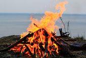 image of bonfire  - big bonfire on the seaside in the nature - JPG