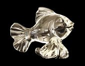 Glass Silver Fish