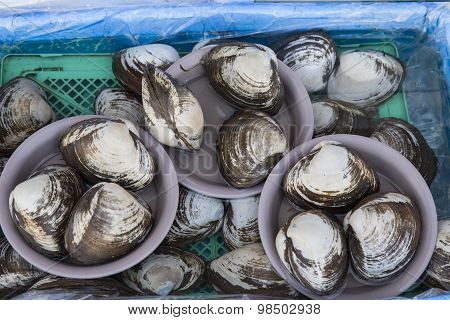 Shellfish For Sale At A Fresh Seafood Market
