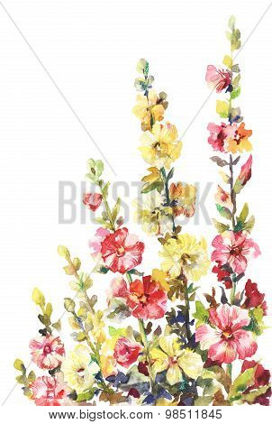 Hand-drawing Illustration Of Mallow Flowers. Watercolor Painting Of Pink  And Yellow Hollyhocks Isol