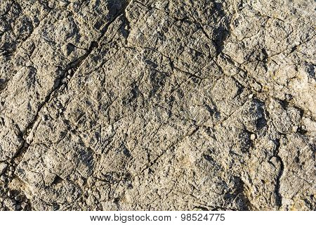 Texture Of A Rock