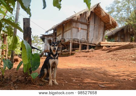 Traditional Village In Thailand