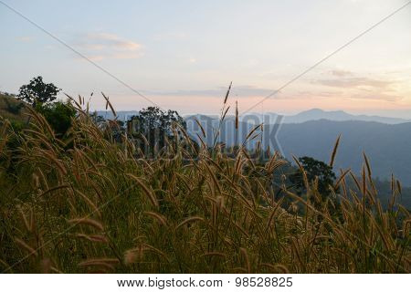 The mountain landscape In Thailand