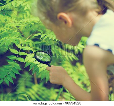 Little Girl Examining Nature Through The Magnifying Glass.