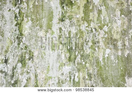 Old Grunge Green Concrete Wall