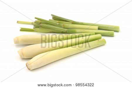 Bundle Of Lemongrass Isolated On White Background