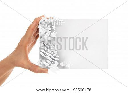 Adult's hand  holding white paper, cardboard. White background with space for text