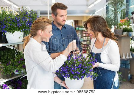 Mid adult female florist guiding couple in buying purple flower plant at store