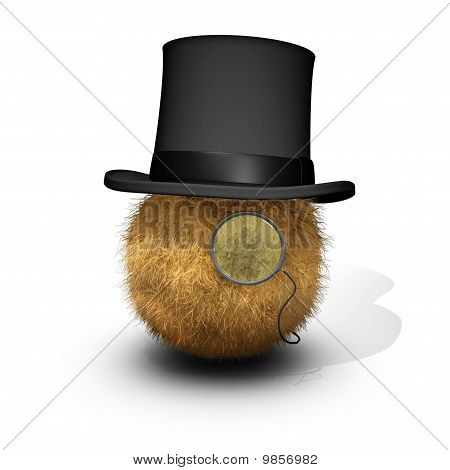 Distinguished Furball