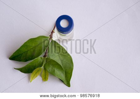 Sample Vial And Leaf