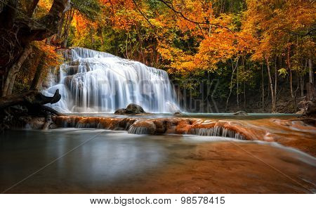 Orange autumn leaves on trees in forest and mountain river flows through stones and waterfall cascades