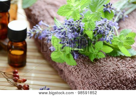 lavender and herbs for aromatherapy