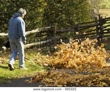 Autumn Chore