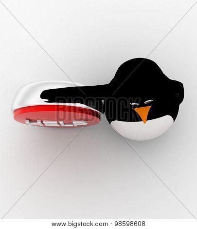 3D Penguin Representing Help Button Concept