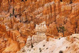 picture of hoodoo  - White Orange Hoodoos Bryce Point Bryce Canyon National Park Utah - JPG