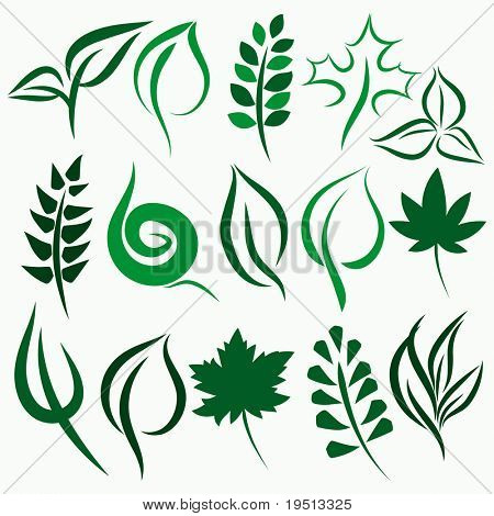 Set of Icons leaves