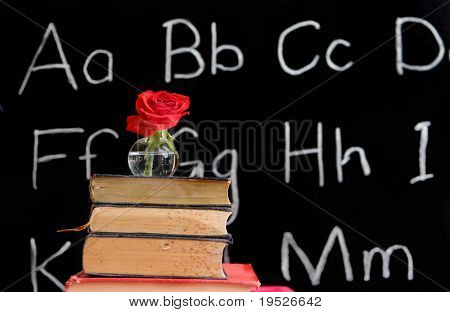 teacher appreciation - rose and a blackboard