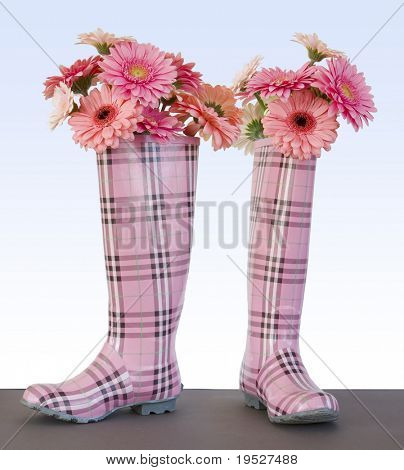 rain boots filled with pink gerber daisies